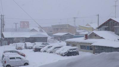 大雪の様子の写真
