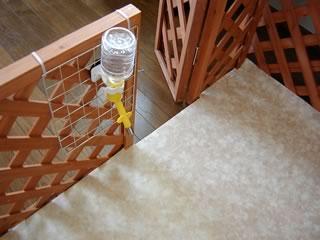 水飲み器をロックタイで固定