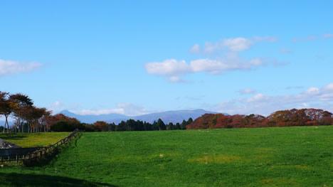 牧場と八甲田山の写真画像
