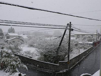 初雪の様子(青森県五戸町)
